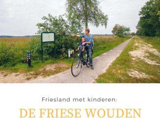 Wat te doen in Friesland met kinderen: De Friese Wouden