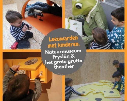 Leeuwarden met kinderen: Natuurmuseum Fryslân en het grote grutto theater